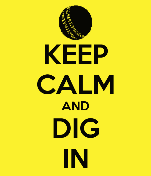 KEEP CALM AND DIG IN