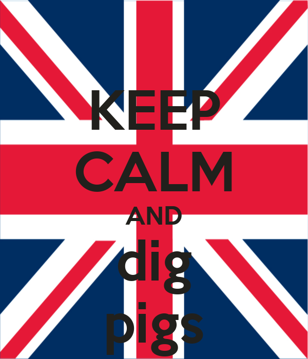 KEEP CALM AND dig pigs
