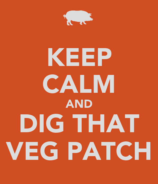 KEEP CALM AND DIG THAT VEG PATCH