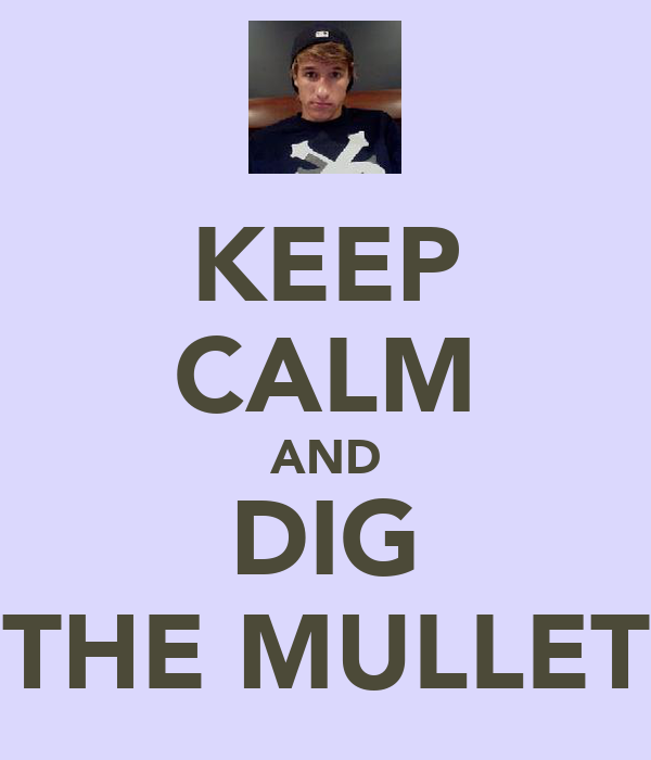 KEEP CALM AND DIG THE MULLET