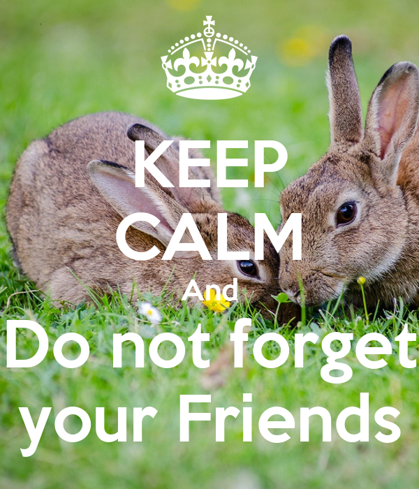KEEP CALM And Do not forget your Friends