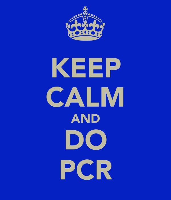 KEEP CALM AND DO PCR