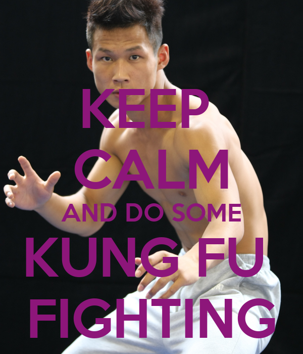 KEEP  CALM AND DO SOME KUNG FU  FIGHTING