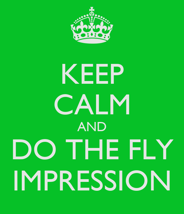 KEEP CALM AND DO THE FLY IMPRESSION