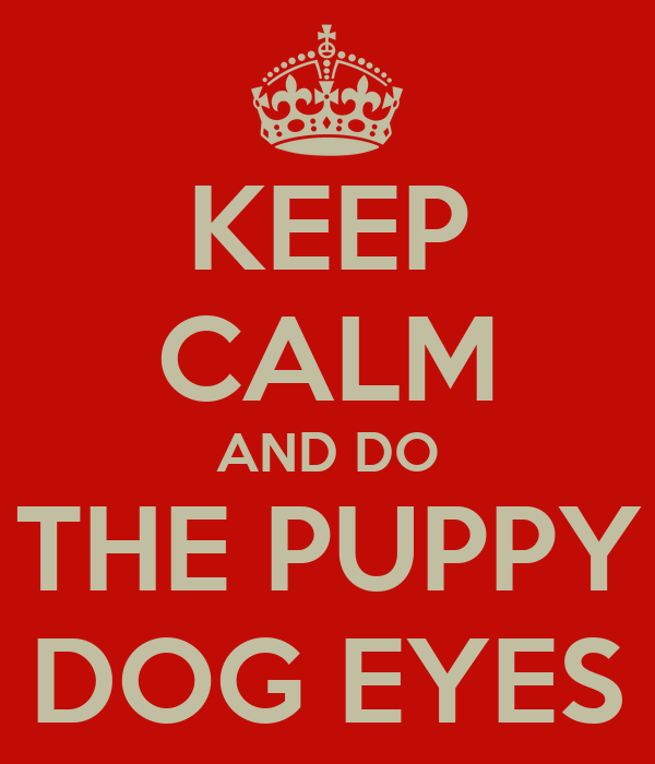 KEEP CALM AND DO THE PUPPY DOG EYES