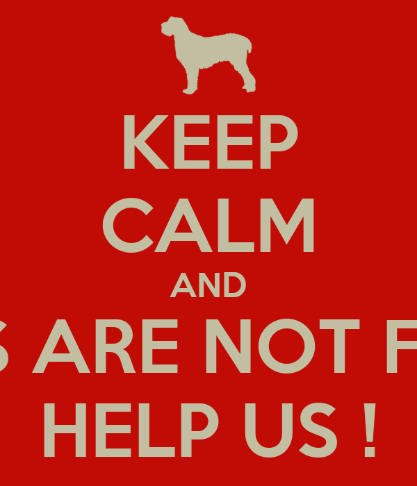 KEEP CALM AND DOGS ARE NOT FOOD  HELP US !