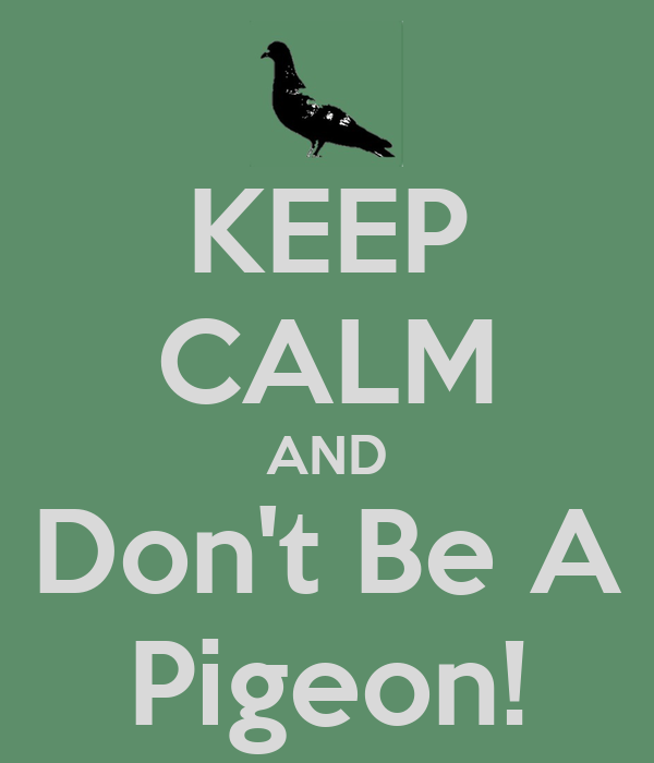 KEEP CALM AND Don't Be A Pigeon!