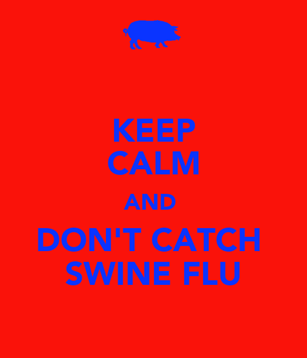 KEEP CALM AND  DON'T CATCH  SWINE FLU