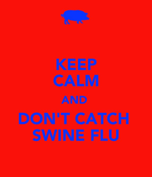KEEP CALM AND  DON'T CATCH  SWINE FLU