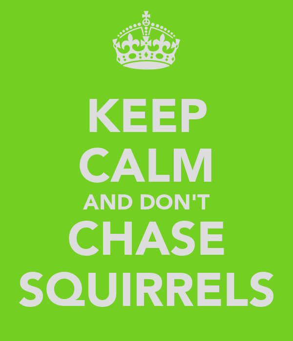 KEEP CALM AND DON'T CHASE SQUIRRELS