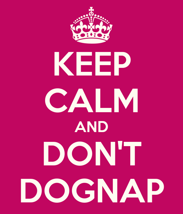 KEEP CALM AND DON'T DOGNAP