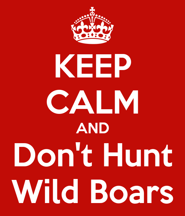 KEEP CALM AND Don't Hunt Wild Boars