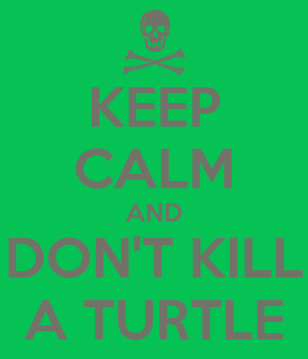 KEEP CALM AND DON'T KILL A TURTLE