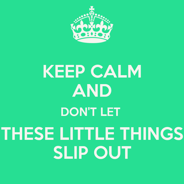 KEEP CALM AND DON'T LET  THESE LITTLE THINGS SLIP OUT