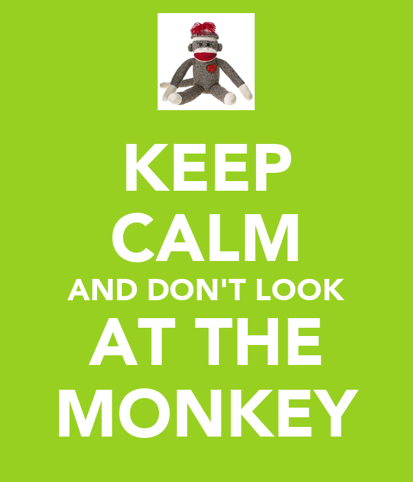 KEEP CALM AND DON'T LOOK AT THE MONKEY
