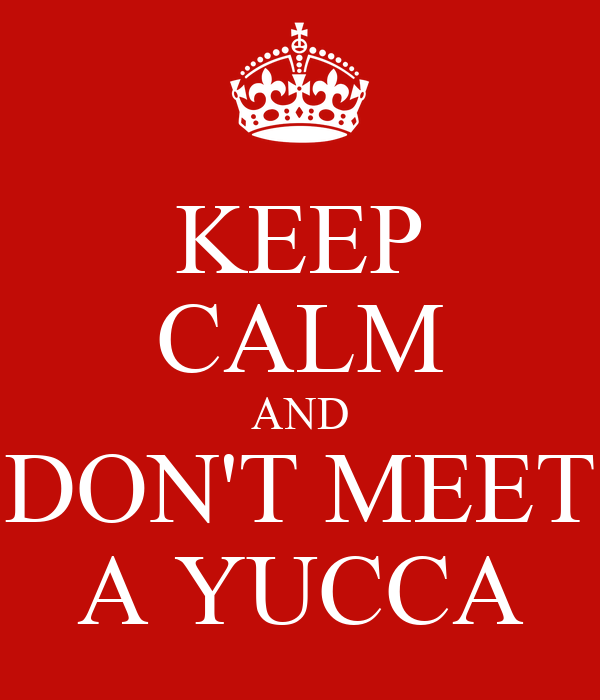 KEEP CALM AND DON'T MEET A YUCCA