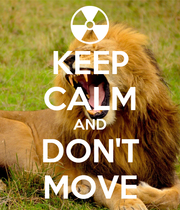 KEEP CALM AND DON'T MOVE