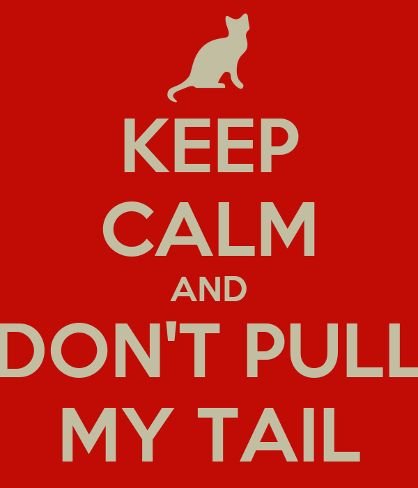 KEEP CALM AND DON'T PULL MY TAIL