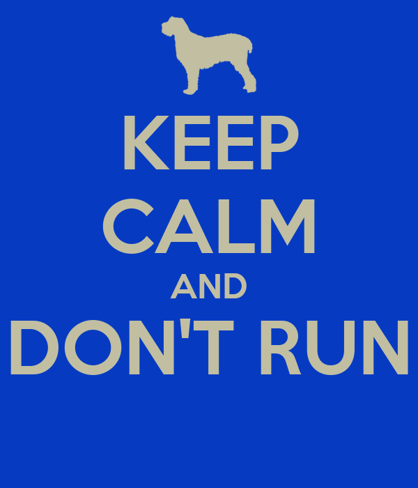 KEEP CALM AND DON'T RUN