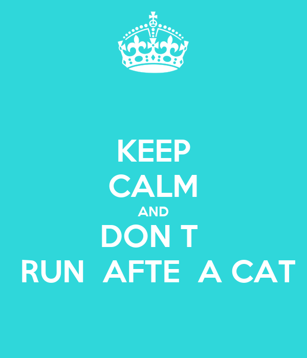 KEEP CALM AND DON T   RUN  AFTE  A CAT