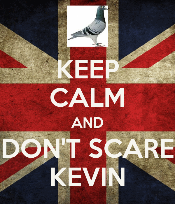 KEEP CALM AND DON'T SCARE KEVIN
