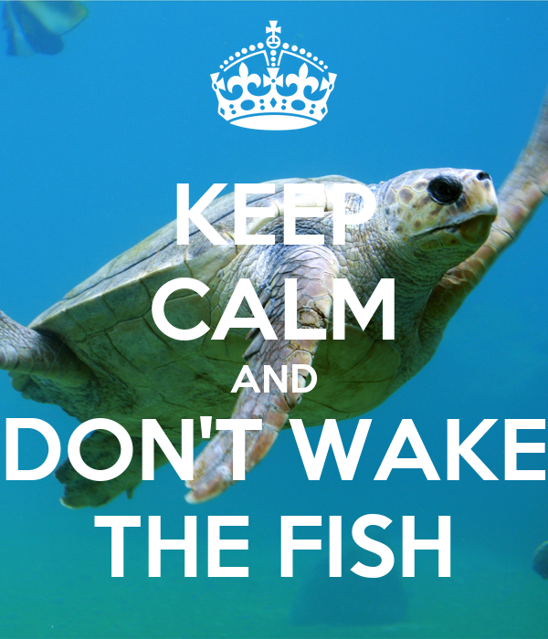 KEEP CALM AND DON'T WAKE THE FISH