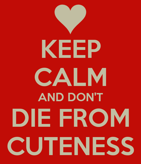 KEEP CALM AND DON'T DIE FROM CUTENESS