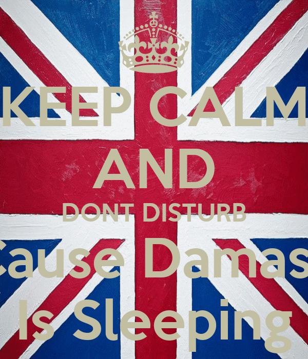 KEEP CALM AND DONT DISTURB Cause Damasa Is Sleeping