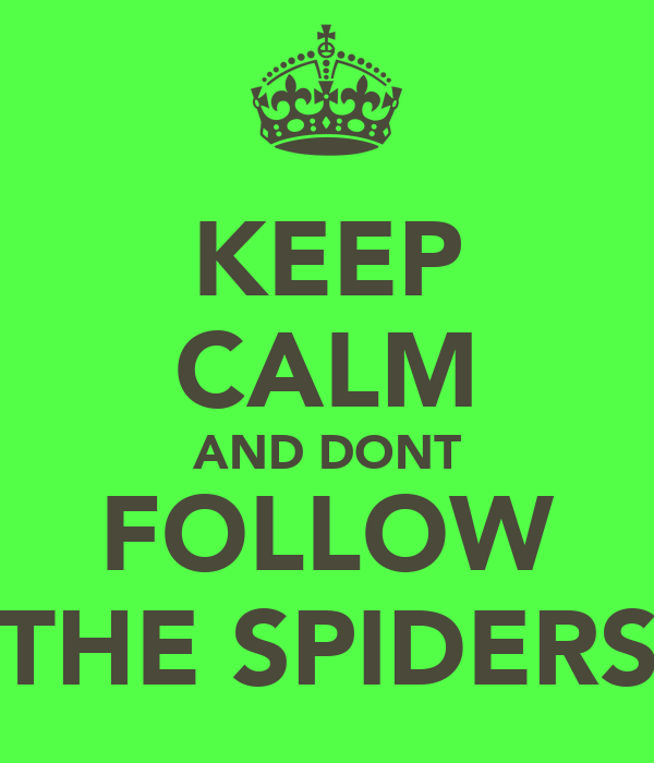 KEEP CALM AND DONT FOLLOW THE SPIDERS