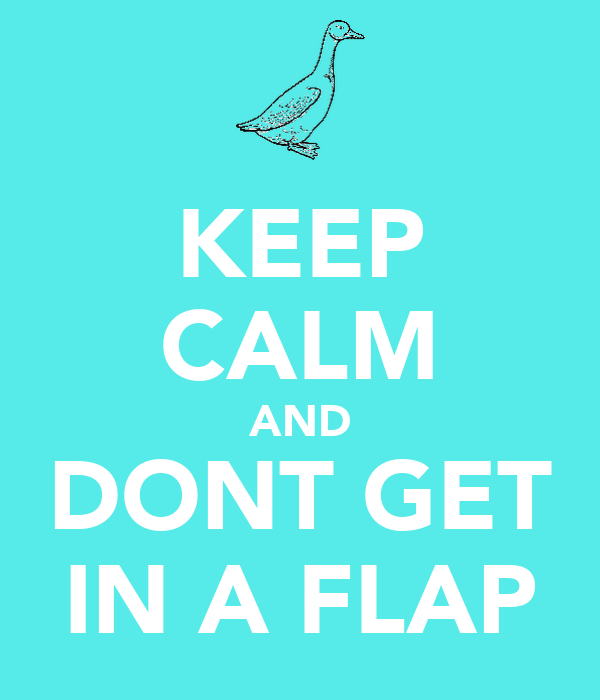 KEEP CALM AND DONT GET IN A FLAP