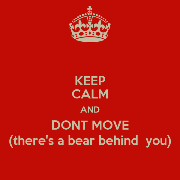 KEEP CALM AND DONT MOVE (there's a bear behind  you)