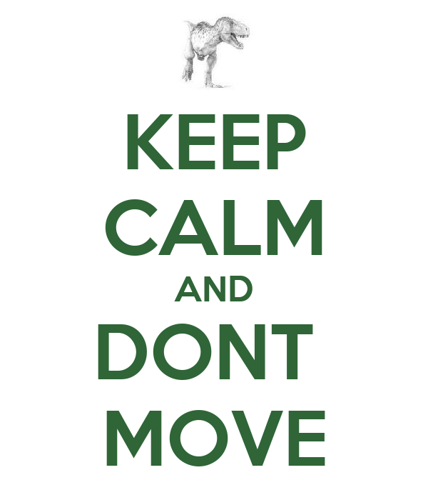 KEEP CALM AND DONT  MOVE