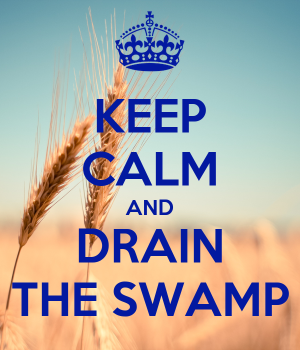 Image result for drain the swamp