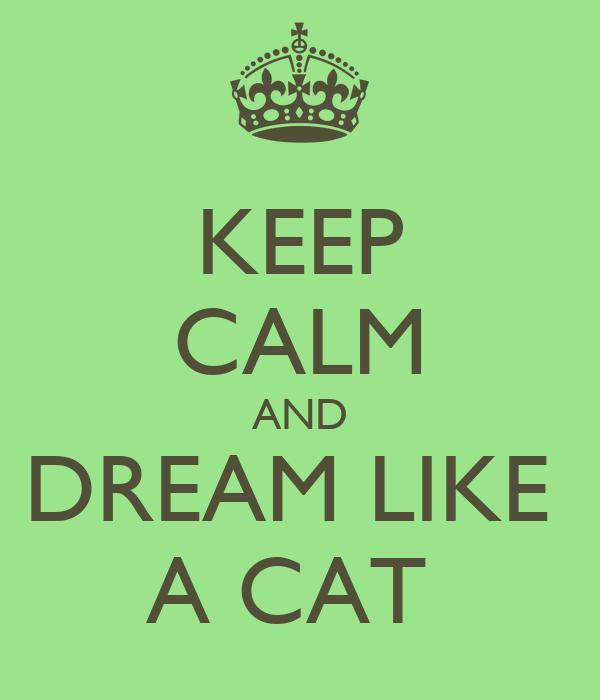 KEEP CALM AND DREAM LIKE  A CAT
