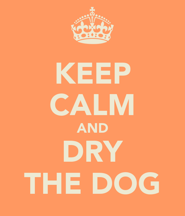 KEEP CALM AND DRY THE DOG