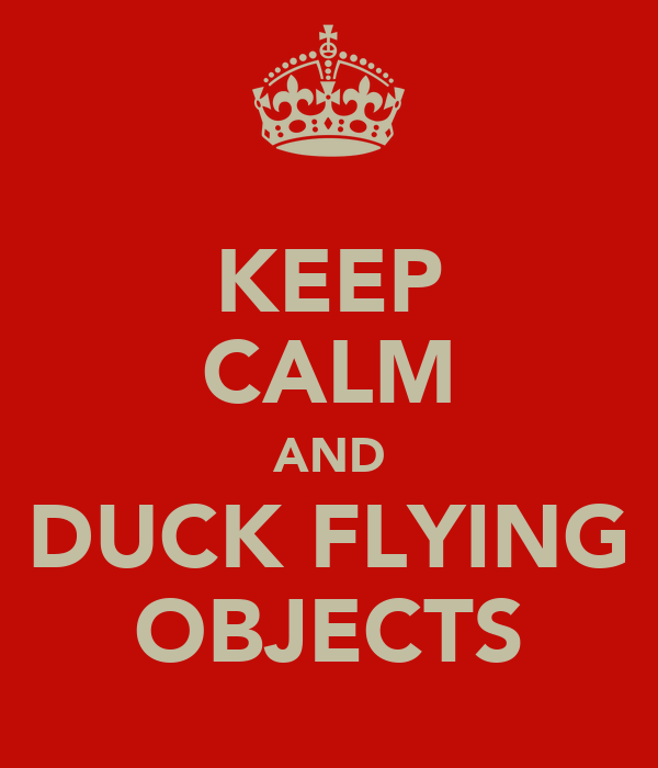 KEEP CALM AND DUCK FLYING OBJECTS