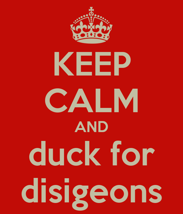 KEEP CALM AND duck for disigeons