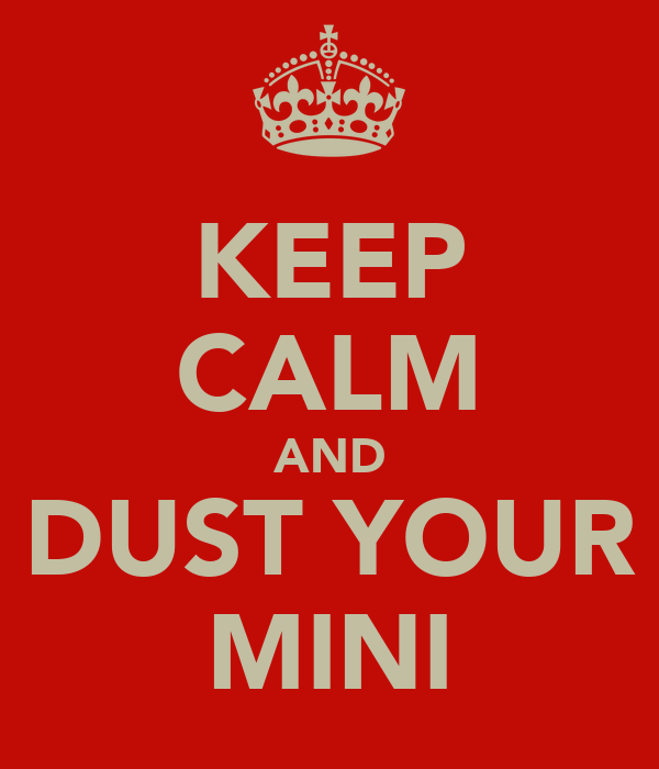 KEEP CALM AND DUST YOUR MINI