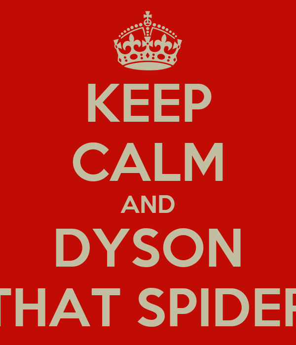 KEEP CALM AND DYSON THAT SPIDER