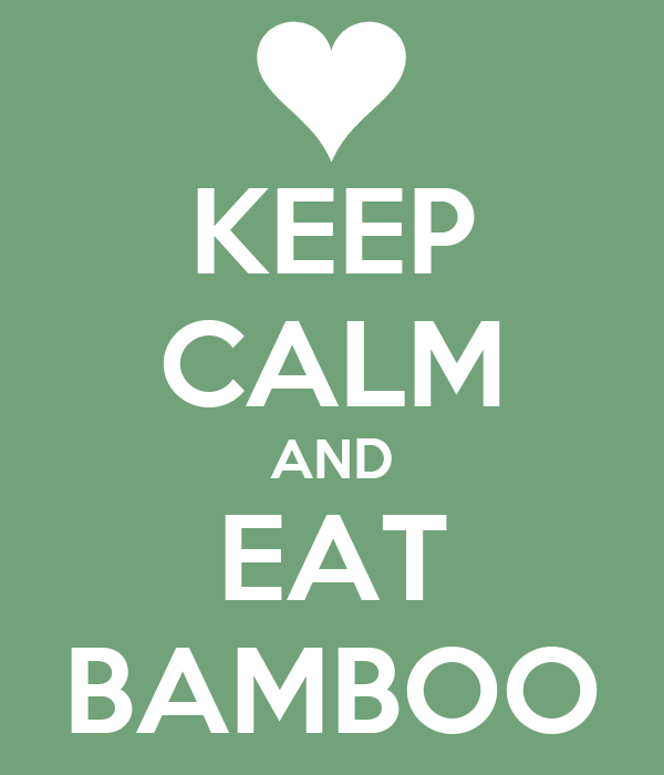 KEEP CALM AND EAT BAMBOO
