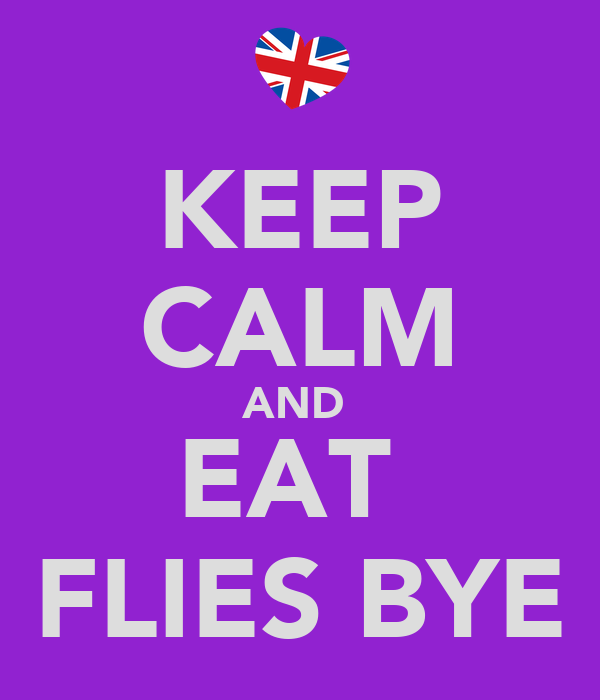 KEEP CALM AND  EAT  FLIES BYE
