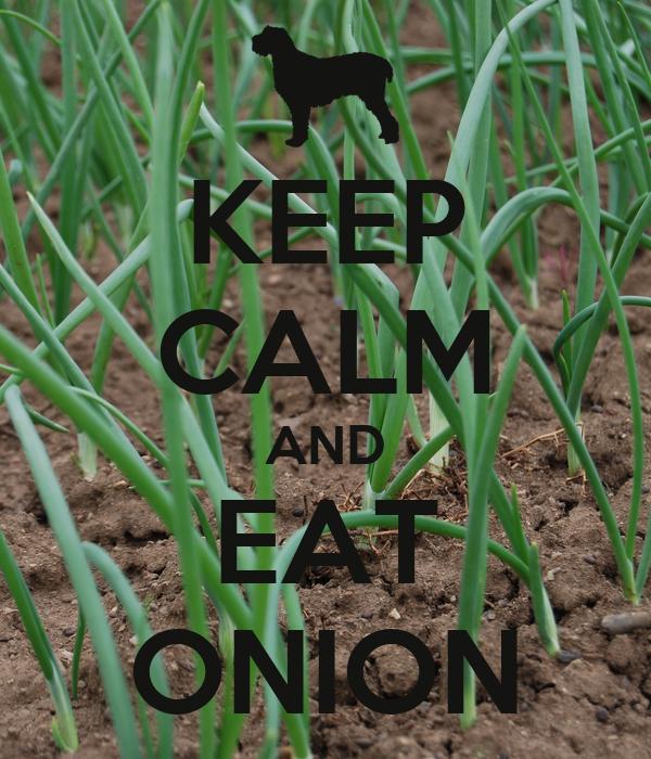 KEEP CALM AND EAT ONION