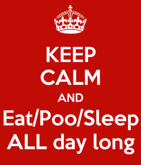 KEEP CALM AND Eat/Poo/Sleep ALL day long