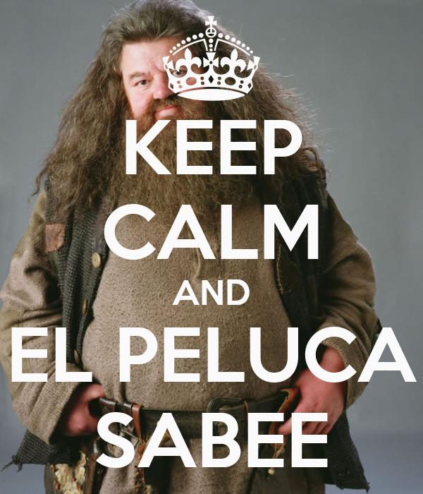 KEEP CALM AND EL PELUCA SABEE