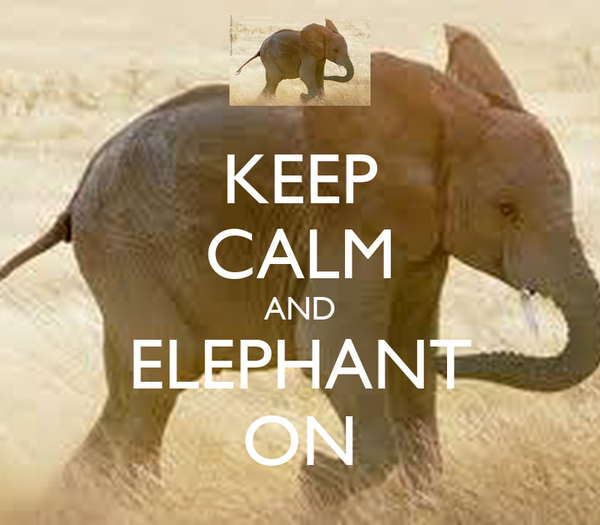 KEEP CALM AND ELEPHANT ON
