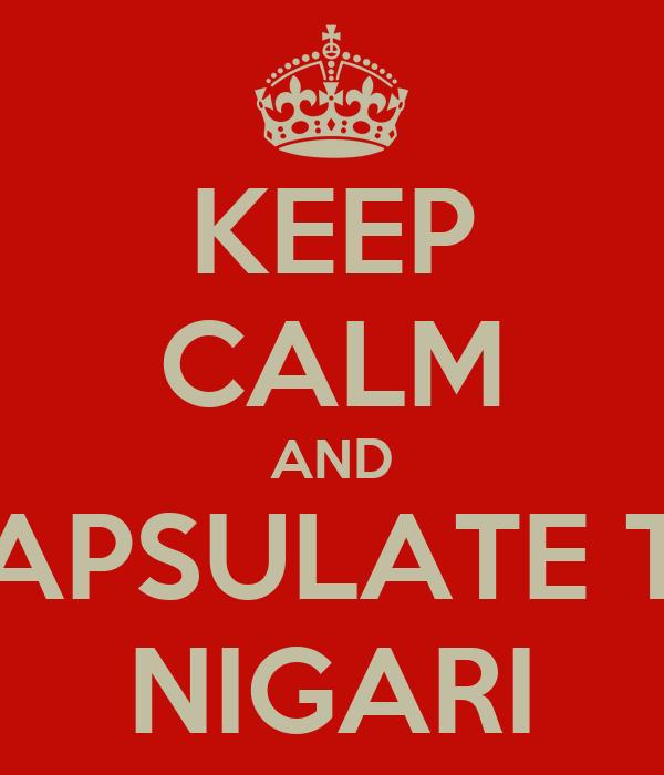 KEEP CALM AND ENCAPSULATE THAT NIGARI