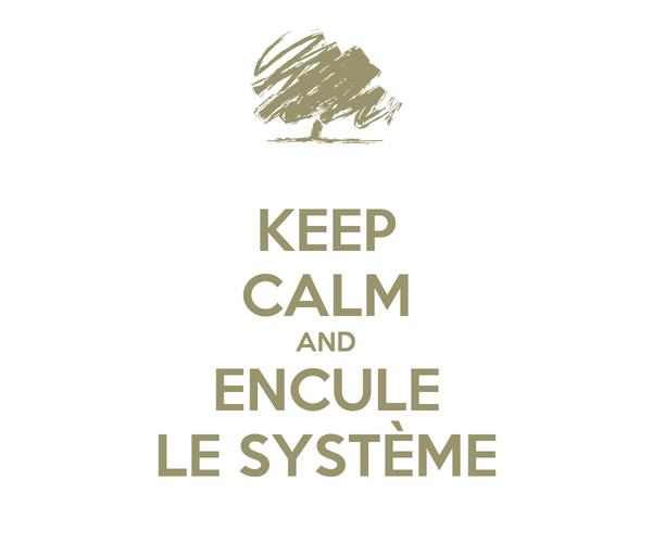 KEEP CALM AND ENCULE LE SYSTÈME