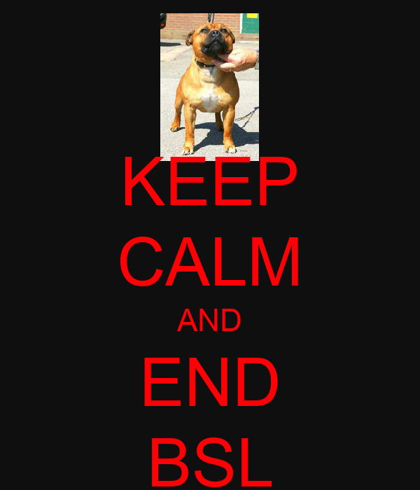 KEEP CALM AND END BSL