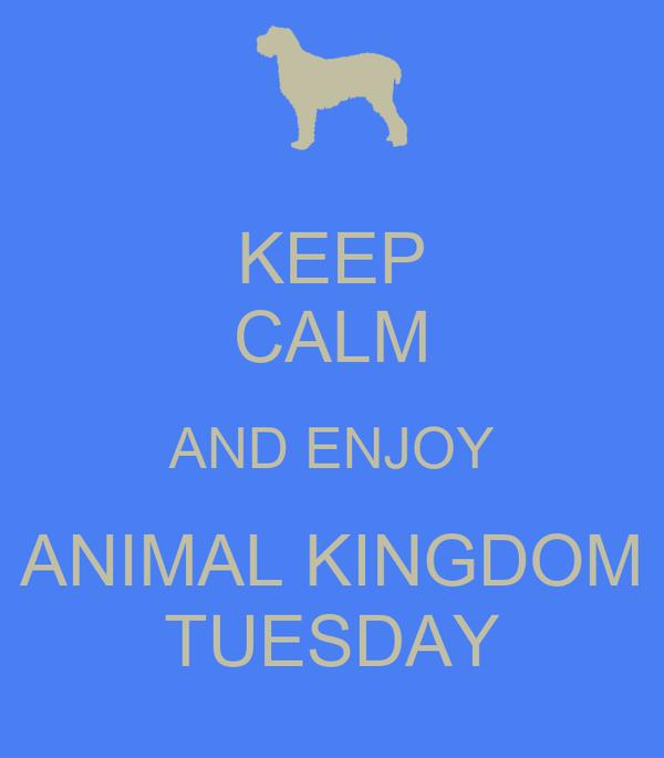 KEEP CALM AND ENJOY ANIMAL KINGDOM TUESDAY