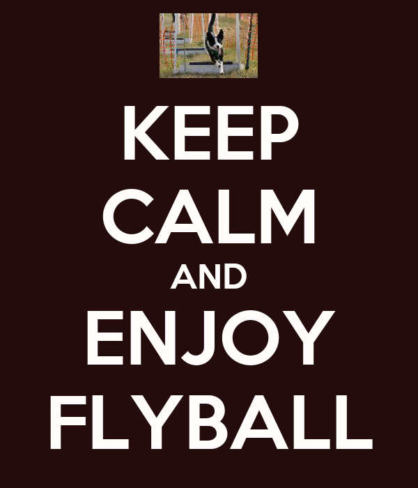 KEEP CALM AND ENJOY FLYBALL